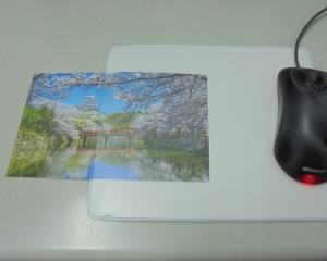 Scanner/Photo Mouse Pad